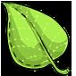 Leaf Plush
