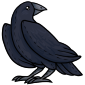 Cuddly Crow Plushie