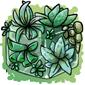 Succulent Ice Cube