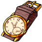 Expensive Wristwatch
