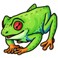 Squishy Frog Plushie