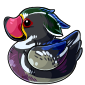 Woodland Ducky