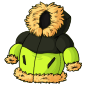 Green Puffy Winter Jacket