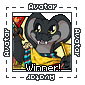 Team Winner Avatar