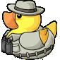 Bird Watcher Ducky