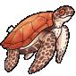 Snuggly Sea Turtle Plush