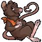 Brown Ratbe